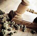 Supreme Court Turns Back Challenge To Marijuana Legalization Laws-media-1