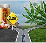 Study: Medical Marijuana Laws Linked To Less  Prescription Drug Use, Medicare Spending-media-1