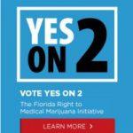 Florida Medical Marijuana Initiative Appears Likely to Pass-media-1