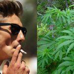 Marijuana Smoking Up, Marijuana Arrests Down-media-5