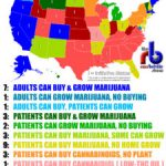 Radical Rant: What Percentage of the U.S. Still Completely Outlaws Marijuana?-media-1