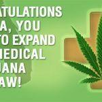 Florida Voters Approve Expansive Medical Marijuana Law-media-1