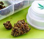 Voters Approve Montana Medical Marijuana Initiative-media-1