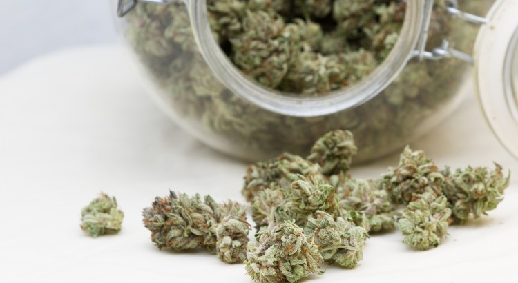 medical marijuana card in Sacramento: Get yours today