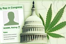 NORML Releases Updated and Revised 2016 Congressional Scorecard