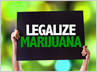 National NORML Board of Directors Endorses Denver Social Use Ballot Initiative 300