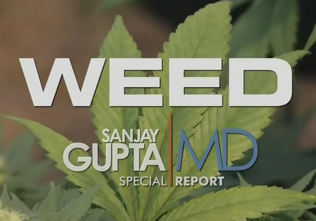 Marijuana Documentaries | MedicalMarijuana.com