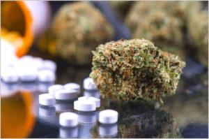 Marijuana and Opioids