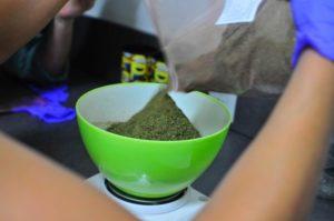 NIDA marijuana