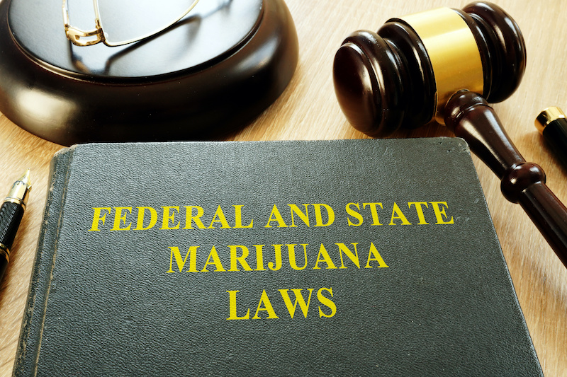 medmj mj laws - Why You Need to Know Your State's Marijuana Laws