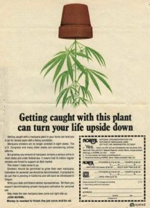 NORML Playboy ad 1977